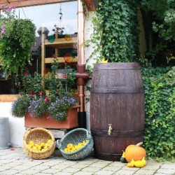 Rain Barrel Barrique 250 Liter